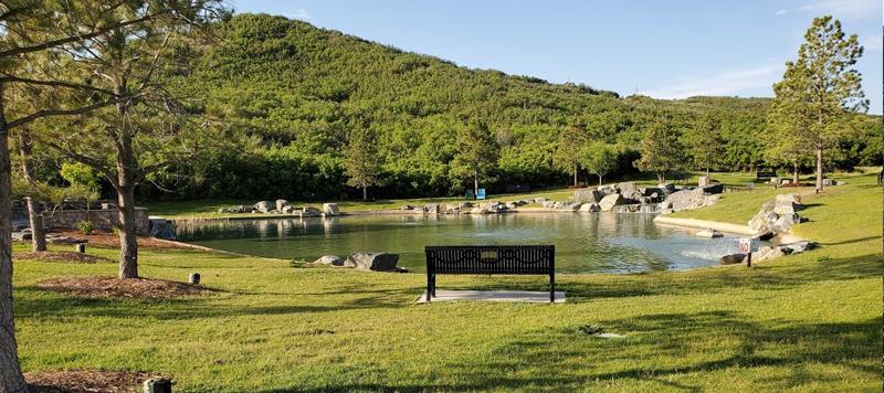 Philip S Miller Park Pond