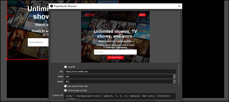 Showing Netflix Homepage